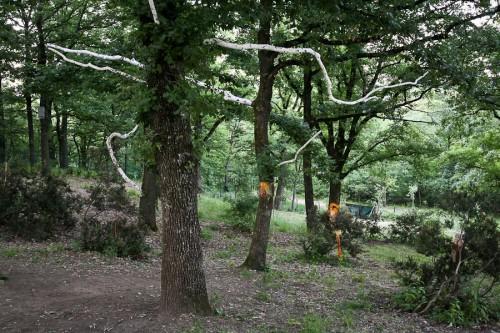 installazione di Pierpaolo Andraghetti - parco cavaioni - bologna